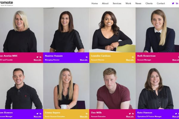website team